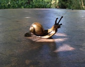 Small solid bronze snail sculpture