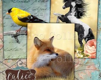 Printable, Digital, Woodland, Collage Sheet, Printable Tags, Junk Journal Tags, Spring Ephemera, Card Making, Art Cards, Printable Cards