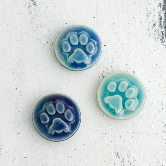 aqua and blue paw magnets, set of 3