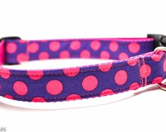 Purple Raspberry Polka Dot Dog Collar / Martingale or Buckle / Dots Dog Collar