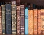 Paris Photography, Classic Books for Sale on the Seine, Parisian, Bouquinistes, France, antique books in France, Office Decor, Paris Print