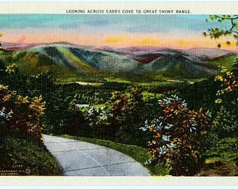 Vintage Postcard - Looking across Cades Cove to the Great Smoky Mountains (Unused)