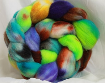 Hand Dyed Falkland roving (4 oz)