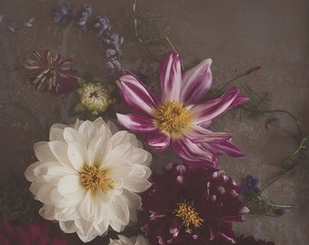 Dahlias on dark