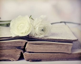 White Lies, white roses, old books, worn edges, torn pages, I love books, Fine Art Photograph, 8x10