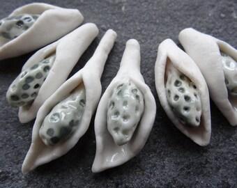 6 artisan pendant seed pod flower 1/2 drilled bead set grey white glazed English porcelain artist hand made jewellery making Katy Wroe B37
