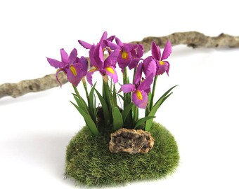 Purple irisis on a little meadow in 1:12 scale