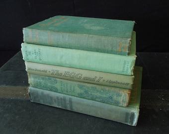 Shabby Rustic Books for Decor - Faded Green Book Stack - Decorative Old Books - Bookshelf Decor Vintage
