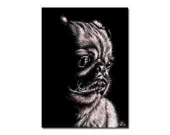 "PUG 14 puppy dog carlin scratchboard painting Sandrine Curtiss ORIGINAL art ACEO 2.5""x3.5"""