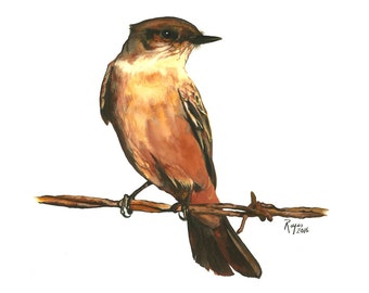 Limited Edition GICLEE MINI Print / Watercolor Painting of a Say's Phoebe