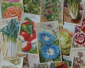 14 Herb, Vegetable & Flower Seed Packet Labels these vintage French lithographs with their Botanical Illustrations are colorful garden art