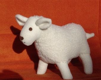 Small white sheep