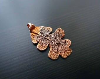 Copper Oak leaf, Electroplated, Real Oak Leaf, Leaf Pendant