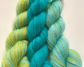 Etude no. 18 (light) Polar Opposites with Contrast... Canon Hand Dyes Charles Self Striping Superwash Sock Yarn