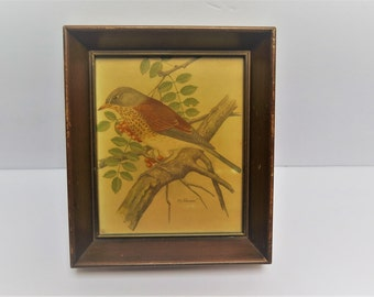 Mid Century Modern Wood Framed 5 x 6 Bird Print