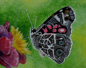 Butterfly Painting - American Painted Lady Butterfly, Rose, insects, butterflies, flowers, bug art, small wall art