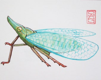 ACEO Dictyopharid Planthopper - Archival Print - Insect Art