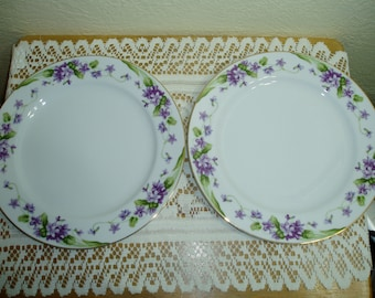 Two Noritake Nancy Dinner Plates