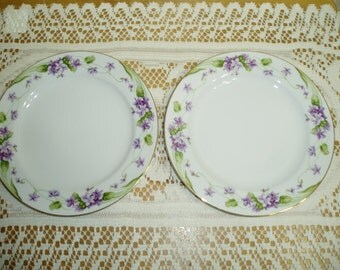 Two Noritake Nancy Salad Plates