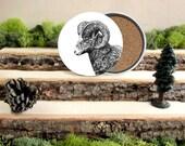 Big Horned Ram Coaster Set - Home Decor - Gift for Animal Lover or Outdoorsman - Cork-Bottom Coaster Set of 4  - Big Horn Sheep