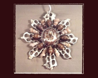 "Sea Shell Keepsake Ornament Accent #183 (Size 6.5""), Beach/Nautical/Coastal Decor, Keepsake Ornament/Wall Accent"
