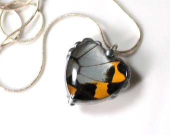 Valentine Heart Black Yellow White Butterfly Wing Heart Pendant Papilio Memnon Insect Jewelry Natural History Jewelry