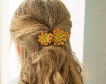 Orange hair clip Succulent Hair Pins Polymer clay Bobby Hairpin Hair Decoration Accessory Handmade Decoration Birthday Wedding Bridal Gift