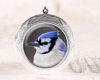 Blue Jay Locket - Silver Bird Locket, Silver Bird Jewelry Locket, Blue Bird Necklace, Blue Jay Necklace, Bird Photo Locket, Bird Photography