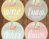 SALE Baby Girl Month Stickers Monthly Baby Stickers, Milestone Baby Month Stickers, Monthly Bodysuit Vintage Floral Shabby Chic Cursive Scri