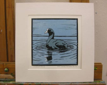 Original bird art Coot animal wildlife art lino cut signed dated numbered mounted ready to frame by H Irvine