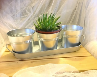Galvanized tray with 3 planter pots,   galvanized flower pots, herb pots, rustic planter pots