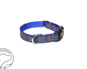 "NEW width - MacBeth Clan Tartan Small Dog Collar - Thin Dog Collar - 1/2"" (12mm) Wide - Blue Plaid - Choice of collar style and size"