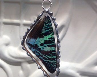 Real Butterfly Wing Pendant  - Madagascan Sunset Moth - Hand Soldered - Great Christmas Gift
