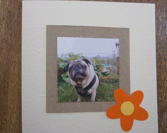 Pug in the garden.Individually handmade Pug card for any occasion