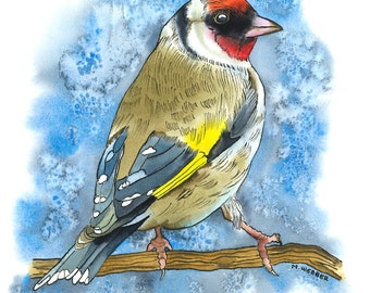 Gold Finch, Limited Edition Print