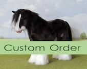 Custom order. Dark brown cob with rope halter and rug.