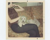 "Vintage Snapshot Photo: ""Patty Hawks and her dog"" 1969 (611515)"
