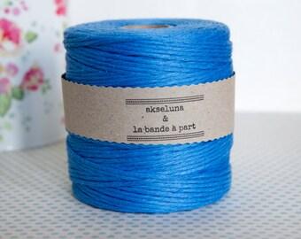 Cord flax monochrome blue sky (several threads) - 10 m ep.2 - 3 mm