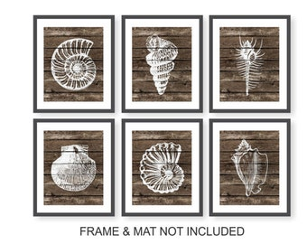 Nautical Shell Prints Bedroom Seashell Art Living Room Beach Decor
