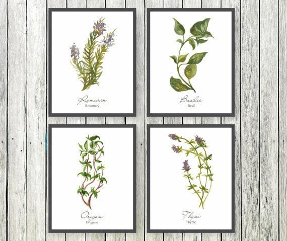 Watercolor Herb Prints French Kitchen Art Botanical Print