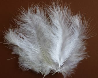 White feathers.   Fluffy white rooster tail feathers.  3.5- 6inches.  10-15cm