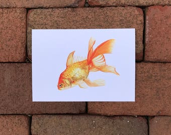 Goldfish Painting Print