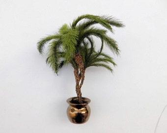 "Kit: Pygmy Palm approx 3"" tall"