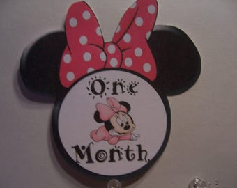 Minnie Mouse Baby Photo Prob Cards-Growth Cards- 1-12 Months