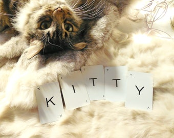 Kitty Cat Vintage Word Cards ~ Custom Pet Name Alphabet Flash Card ~ Wall Art Supply Embellishment