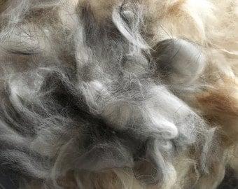 French angora rabbit fiber