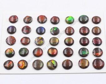 10-11mm Round Ammolite Cabochons