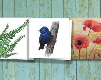 3x3 Nature Variety Pack - 3 cards