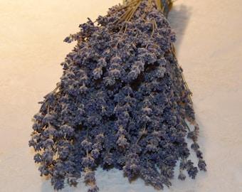 Lavender, English lavender, Lavender bunch