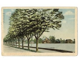Wilmington Delaware antique postcard | Cool Springs Reservoir, Cool Spring Park Historic District | 1910s DE travel souvenir, hometown decor